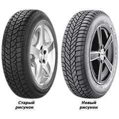 Купить Зимняя шина DIPLOMAT WINTER ST 185/70R14 88T
