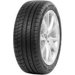 Купить Зимняя шина DAVANTI Wintoura Plus 205/50R17 93V